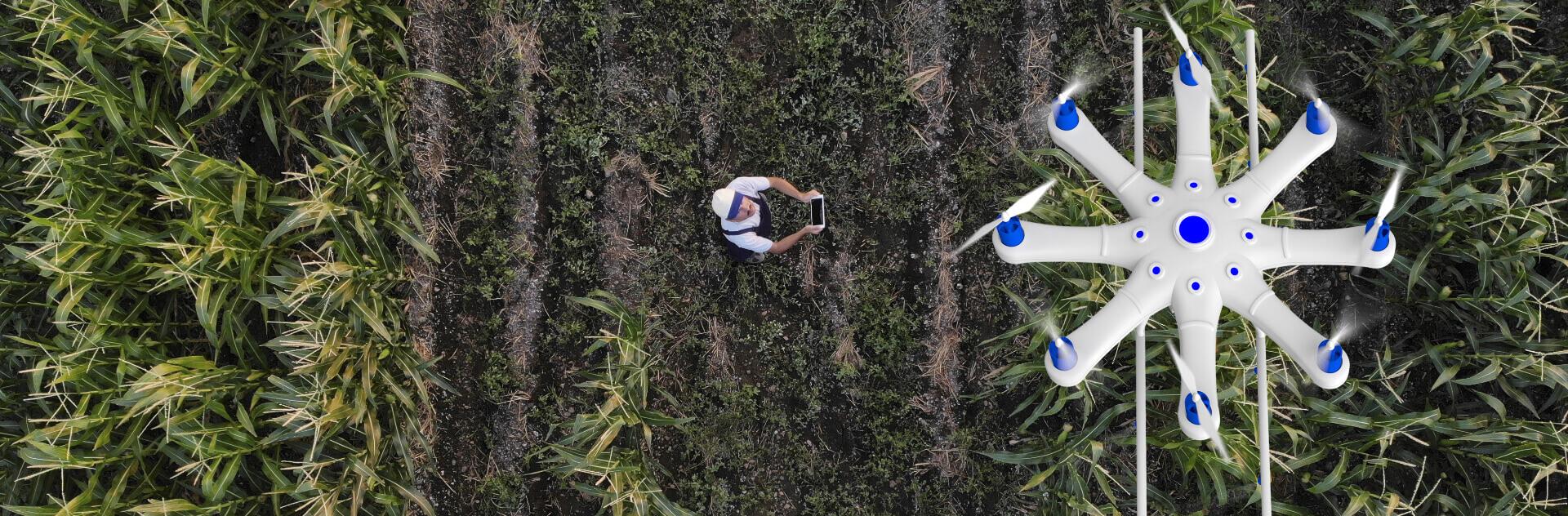 innovation agricole au service de l environnement